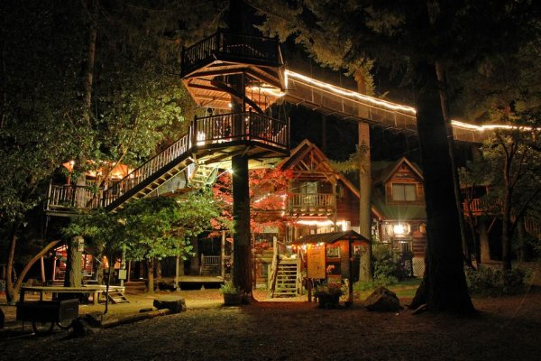 Самые красивые фото домов в лесу - №5
