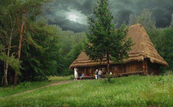 Самые красивые фото домов в лесу - №7
