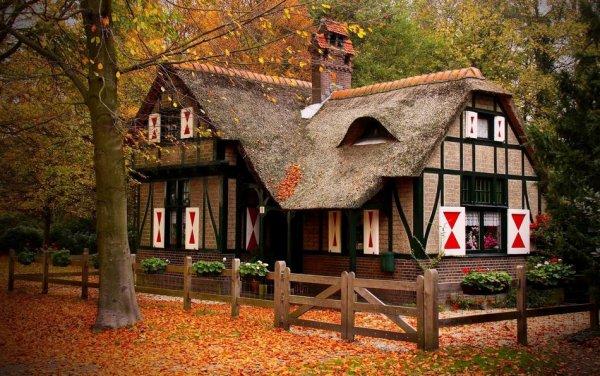 Самые красивые фото домов в лесу - №8