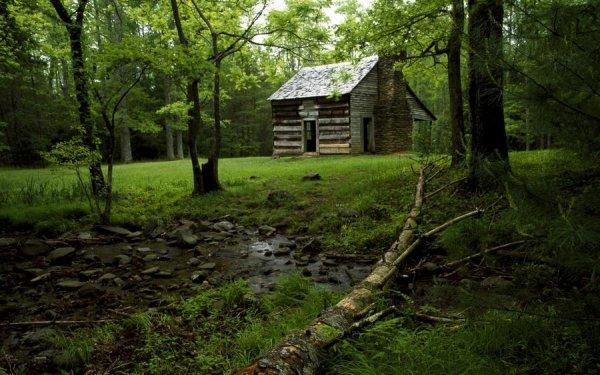 Самые красивые фото домов в лесу - №11