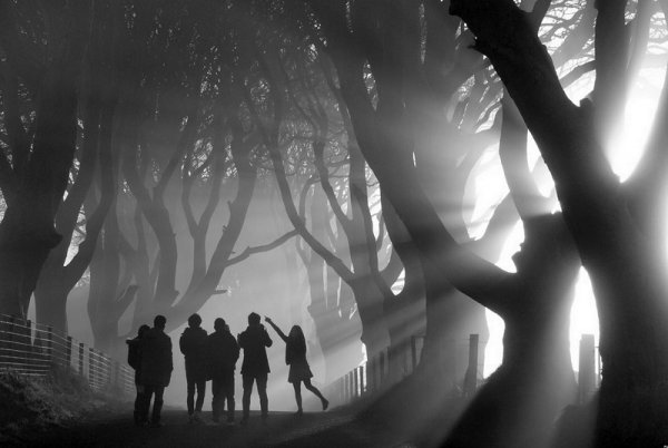 Bob McCallion - Mystical Morning