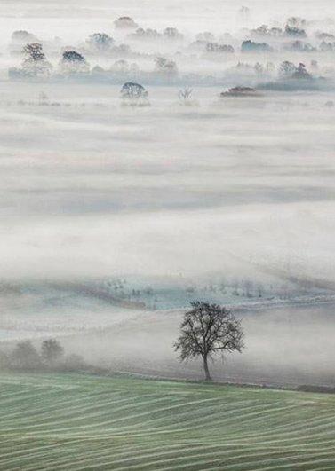 John Hoddinott - Vale of mist