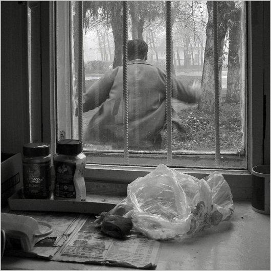 Новости в фотографиях - Первый Международный фотофестиваль в Суздале - №17