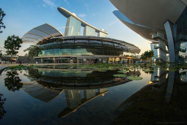 Отражение городских пейзажей в красивых фото - №3