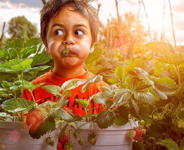 Детство в кадре - интересный фото проект - №6