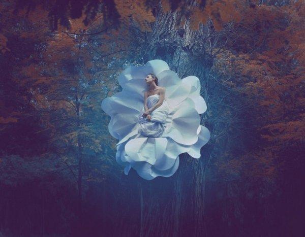Образы из сна профессионального фотографа Катерины Плотниковой - №5