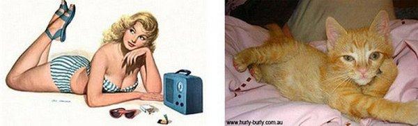 Фото юмор про кошек и девушек пин-ап! - №3