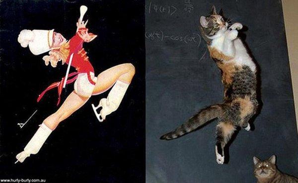 Фото юмор про кошек и девушек пин-ап! - №4
