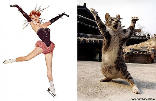 Фото юмор про кошек и девушек пин-ап! - №7