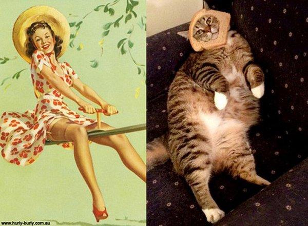 Фото юмор про кошек и девушек пин-ап! - №9