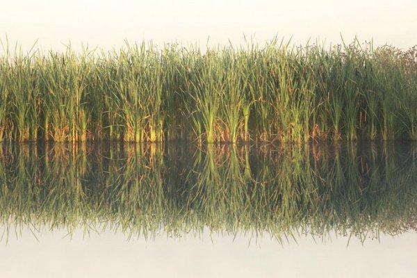 Килиан Шоенбергер. Удивительно красивые фото пейзажи - №24
