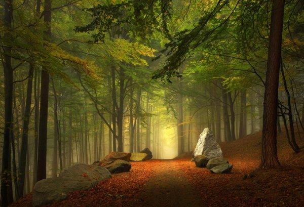 Килиан Шоенбергер. Удивительно красивые фото пейзажи - №25