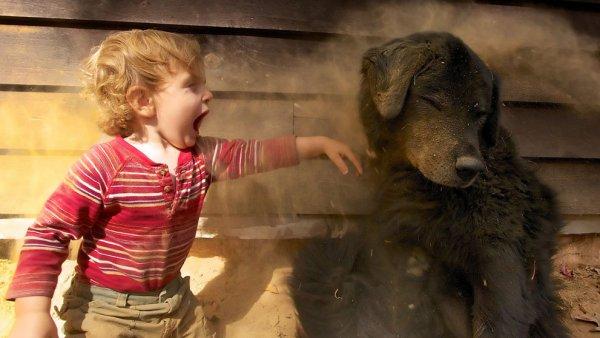 Новости в фотографиях - National Geographic Photo Contest 2013 - №9