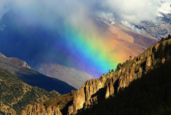 Новости в фотографиях - National Geographic Photo Contest 2013 - №19