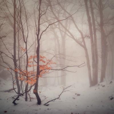 Необъятная Россия в фото пейзажах Даниила Коржонова - №29