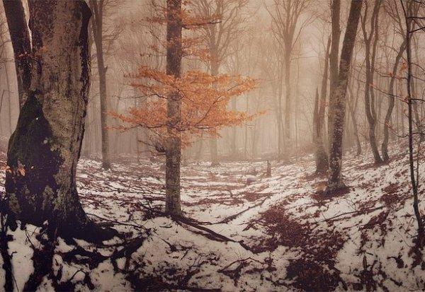 Зимние фото пейзажи из Крыма - №3