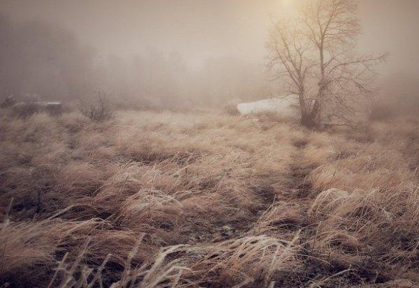 Зимние фото пейзажи из Крыма - №11