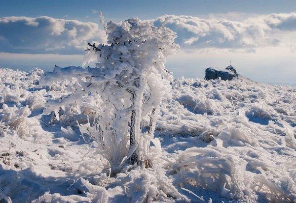 Зимние фото пейзажи из Крыма - №23