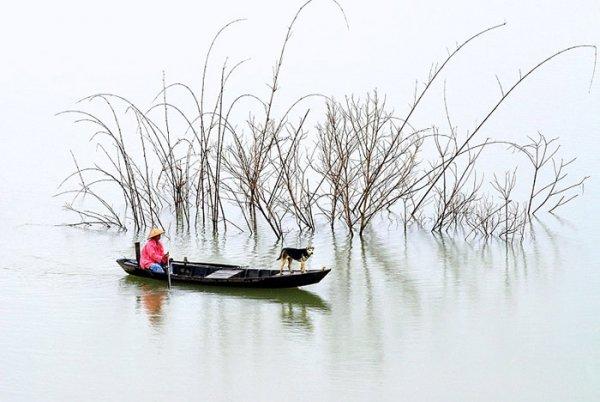 Ли Хоанг Лонг. Творчество увлеченного профессионального фотографа - №25