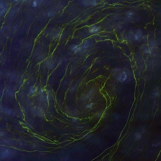 Новости в фотографиях - лучшие снимки со спутника 2013 - №2