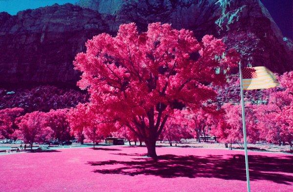 Шон Линч. Инфракрасные фото пейзажи Непала и другие работы  - №20