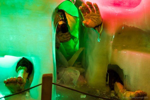 Яркие фото из глубин белоснежных ледников. Лучшие фото ледников мира! - №7