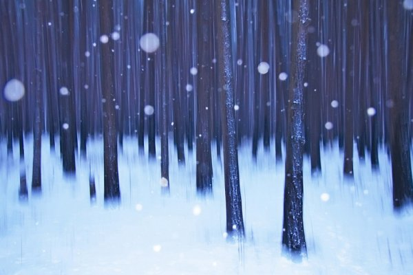 Урок фотографии. Поиск сюжетов для съемки зимой - №17