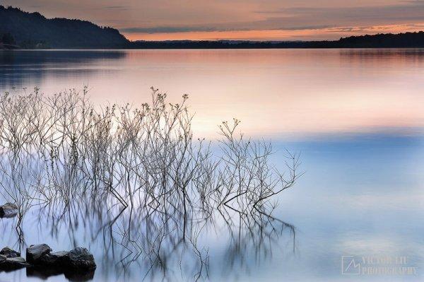Чувственные фото пейзажи от канадского фотографа Victor Liu - №4