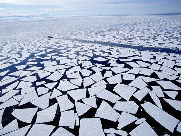 Загадочно спокойный мир Антарктиды - №4