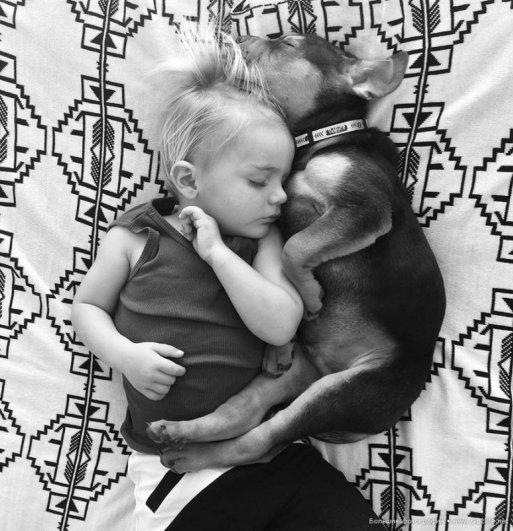 Милые дети и собачки - новый тренд Instagram - №2