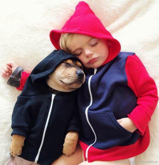 Милые дети и собачки - новый тренд Instagram - №6