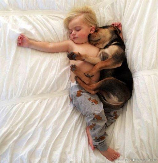 Милые дети и собачки - новый тренд Instagram - №10