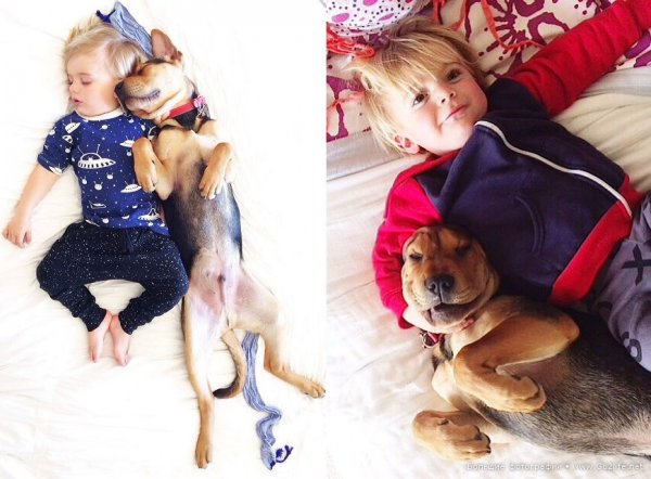 Милые дети и собачки - новый тренд Instagram - №14