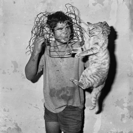 Роджер Баллен. Ловец кошек. 1998
