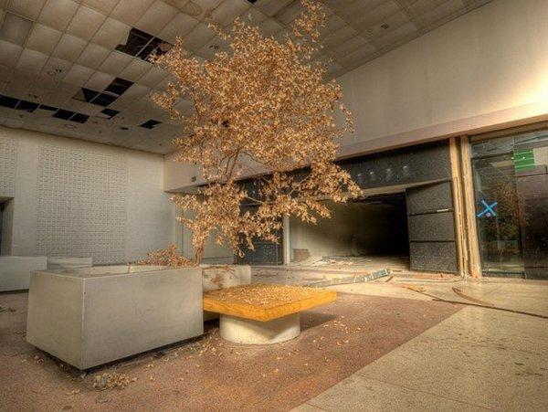 Заброшенные здания - бывшие мегамоллы США - №6