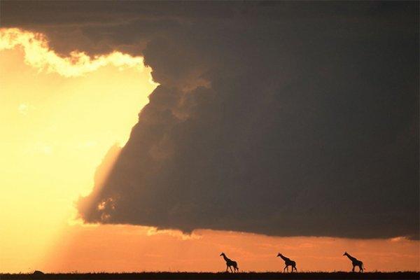 фото закат солнца