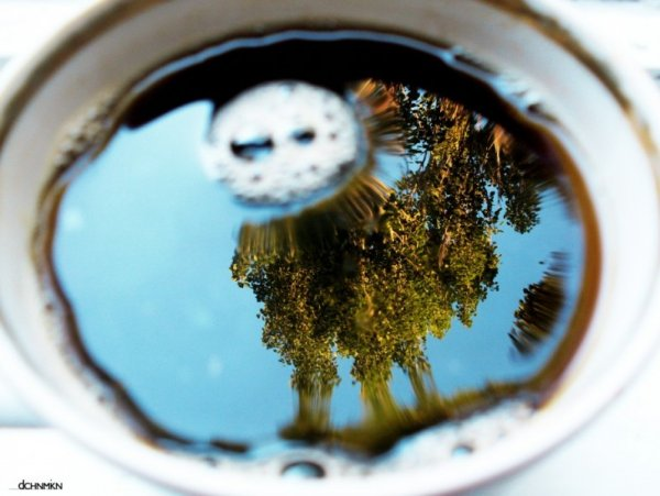 Зеркальное отражение
