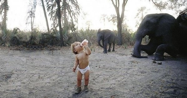 Лучшее детство