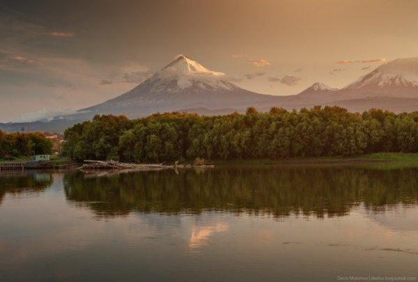 дикая природа Камчатки