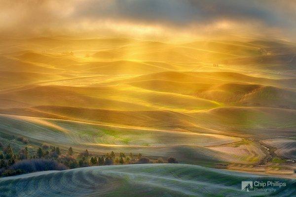 Красота природы - Холмы региона Палуз, залитые золотым светом