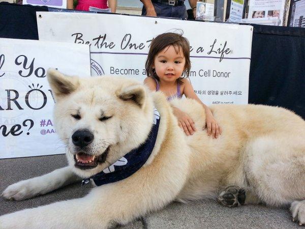 фото собак и детей 3