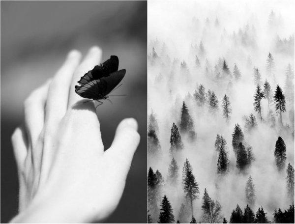 черно-белые фото работы 12