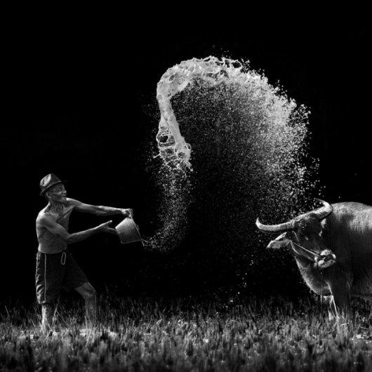 черно-белые фото работы 16