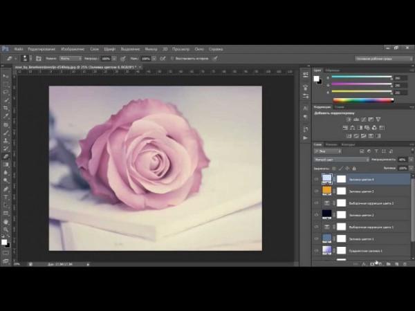 Обработка фотографии в мягких пурпурных тонах