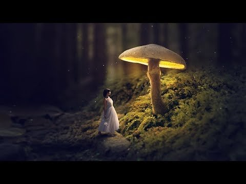 Fantasy Manipulation Tutorial