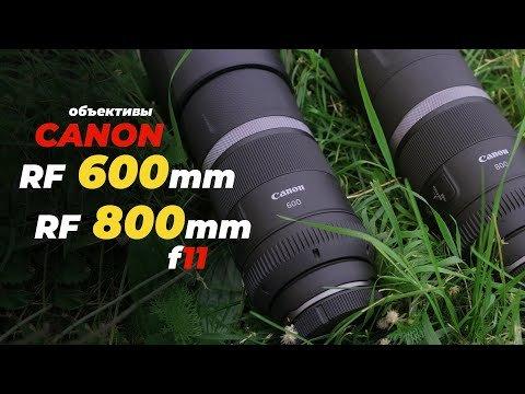 Тестируем Canon RF 600mm f/11 и Canon RF 800mm f/11