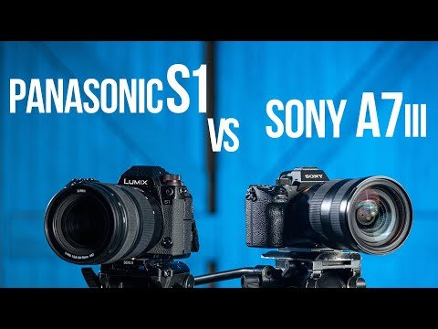 Sony a7 III vs Panasonic S1
